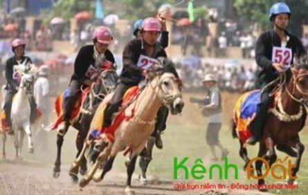 Đà Nẵng sẽ có dự án trường đua ngựa 200 triệu đô