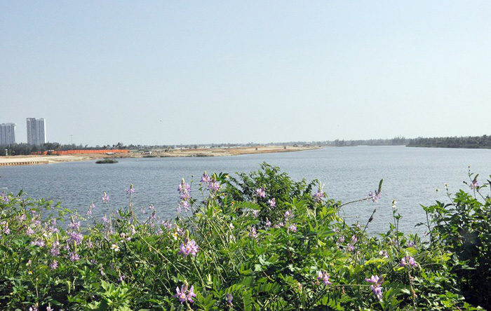 Sông Cổ Cò đoạn qua địa phận TP. Đà Nẵng.
