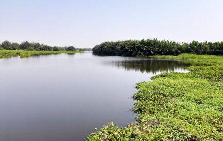 Sông Cổ Cò đoạn chảy qua tỉnh Quảng Nam