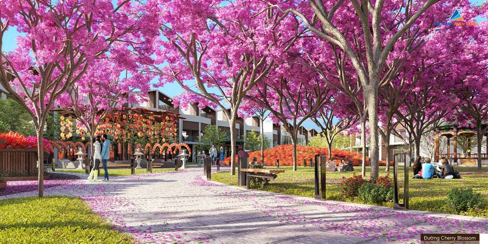 Đường đi bộ tại Dragon Smart City